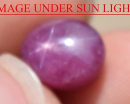 6.06 Ct Star Ruby CERTIFIED Beautiful Natural Unheated Untreated