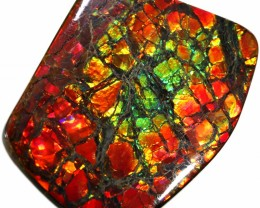 70.80 CTS 2 SIDES AMMOLITE STONE FROM CANADA [SAFE149]