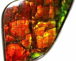 11.40 CTS 2 SIDES AMMOLITE STONE FROM CANADA [SAFE151]