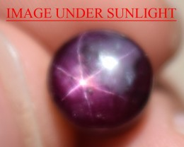 6.16 Ct Star Ruby CERTIFIED Beautiful Natural Unheated Untreated