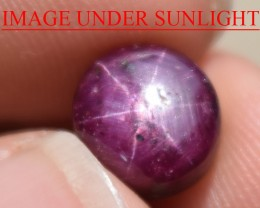 5.45 Ct Star Ruby CERTIFIED Beautiful Natural Unheated Untreated