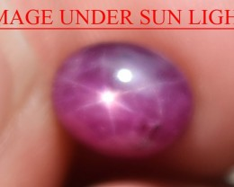 3.26 Ct Star Ruby CERTIFIED Beautiful Natural Unheated Untreated