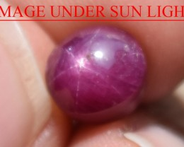 4.85 Ct Star Ruby CERTIFIED Beautiful Natural Unheated Untreated