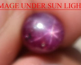 2.82 Ct Star Ruby CERTIFIED Beautiful Natural Unheated Untreated