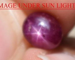 3.06 Ct Star Ruby CERTIFIED Beautiful Natural Unheated Untreated