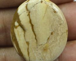 22.35 Cts Peanut Wood Jasper Natural Cabochon x20-5