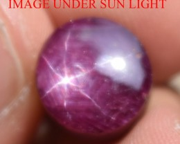 11.04 Ct Star Ruby CERTIFIED Beautiful Natural Unheated Untreated