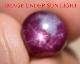 7.92 Ct Star Ruby CERTIFIED Beautiful Natural Unheated Untreated