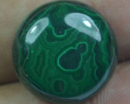 23.75 Cts Natural Malachite Cabochon (UnHeated + UnTreated) x42-130