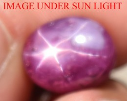 10.43 Ct Star Ruby CERTIFIED Beautiful Natural Unheated Untreated
