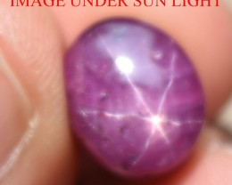 10.38 Ct Star Ruby CERTIFIED Beautiful Natural Unheated Untreated