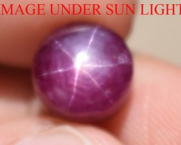 6.46 Ct Star Ruby CERTIFIED Beautiful Natural Unheated Untreated