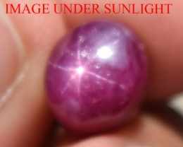 7.64 Ct Star Ruby CERTIFIED Beautiful Natural Unheated Untreated