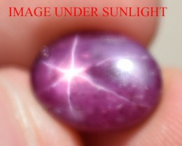 6.84 Ct Star Ruby CERTIFIED Beautiful Natural Unheated Untreated