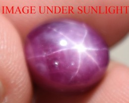8.32 Ct Star Ruby CERTIFIED Beautiful Natural Unheated Untreated