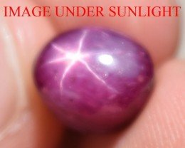 7.15 Ct Star Ruby CERTIFIED Beautiful Natural Unheated Untreated