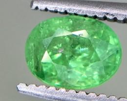 0.90 Crt Tsavorite  Faceted Gemstone (R 204)