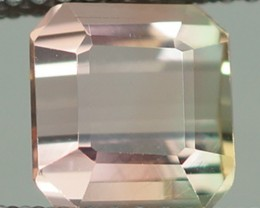 1.94 CT  BI COLOR TOURMALINE !!! AAA QUALITY - TU110