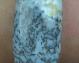 10.10 Cts Dendrite Opal Natural Cabochon x4-181