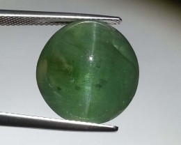 19.65 ct Rare Beautiful Oval Cut Natural Apatite Cat's Eye