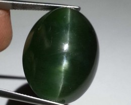 95.29 ct Rare & Big Oval Cut Natural Green  Apatite Cat's Eye