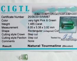 Certified|CIGTL~1.485 Cts Museum Grade Bi color Tourmaline Gems