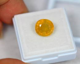 5.66Ct Natural Yellow Sapphire Oval Cut Lot LZ934