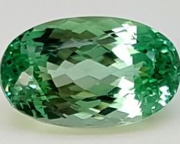 14,75Crt Green Spodumene  Best Grade Gemstones JI80