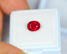 1.77Ct Blood Red Color Ruby Oval Cut Lot LZB230