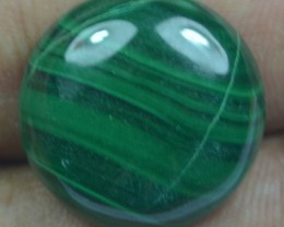 24.55 Cts Natural Malachite Cabochon (UnHeated + UnTreated) x42-77