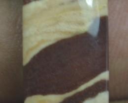 9.70 Cts Peanut Wood Jasper Natural Cabochon x20-88