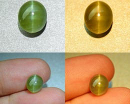 Alexandrite Silver Ray Cat's Eye 2.98 ct. Unheated / Untreated Certified (0