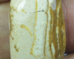 23.10 Cts Peanut Wood Jasper Natural Cabochon x20-56