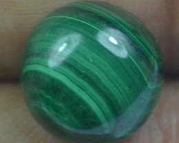 11.90 Cts Natural Malachite Cabochon (UnHeated + UnTreated) x42-111