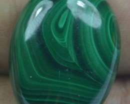 43.40 Cts Natural Malachite Cabochon (UnHeated + UnTreated) x42-104