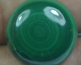 22.00  Cts Natural Malachite Cabochon (UnHeated + UnTreated) x42-101