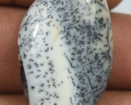 20.90 Cts Dendrite Opal Natural Cabochon x4-316