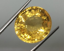 16.58 Carat VVS Golden Citrine of the Century - Stunning Quality !