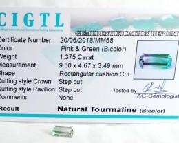 Certified|CIGTL~1.375 Cts Museum Grade Bi color Tourmaline Gem