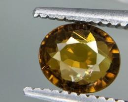 0.65 Crt Andradite Garnet Faceted Gemstone (R 212)
