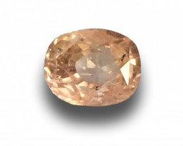 Natural Unheated Padparadscha| Loose Gemstone| Sri Lanka - New
