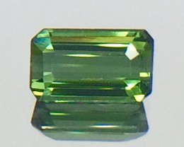 0.75 Natural Green Tourmaline Faceted Gemstone (MG 29)