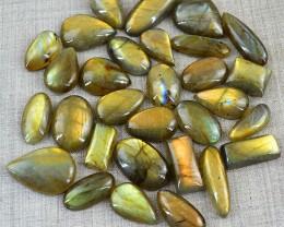 Genuine 446.00 Cts Golden Flash Labradorite Gemstone Lot