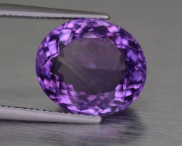 8.90 Cts14.5x12 mm Amethyst From Uruguay