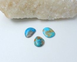 20ct Sleeping Beauty Turquoise Cabochons (18080616)