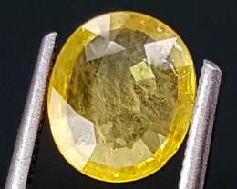 1.30Crt Yellow Sapphire  Best Grade Gemstones JI09