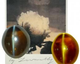 6ct Alexandrite Cat's Eye Chrysoberyl
