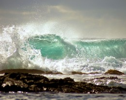 8 foot wave with nice curl...