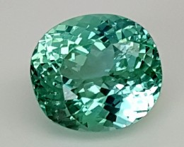8.95Crt Green Spodumene  Best Grade Gemstones JI10