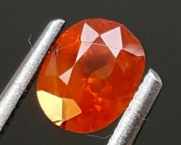 0.95 cts TRIPLITE Best Grade Gemstones JI11